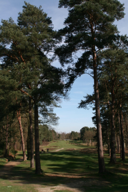 West Hill 8th hole