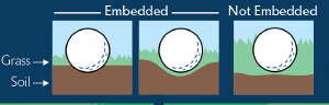 Embedded Ball